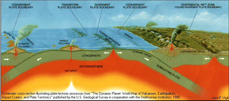 Plate tectonics a level geography marked by teachers this cross section shows us how all of the volcanoes are situated on top of a plate boundary publicscrutiny Choice Image