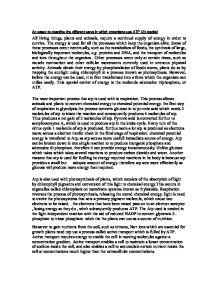 Different englishes essay Alamy baldwin ap essay
