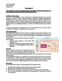 The control Mechanisms Essay Sample