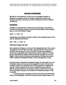 investigating enzyme activity essay