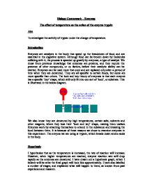 biology coursework trypsin Category: essays research papers title: biology coursework: the effect of trypsin on gelatine.