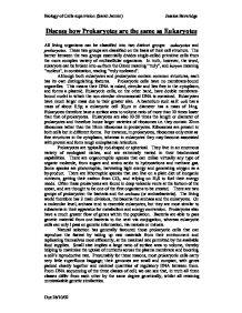 prokaryote vs eukaryote essay