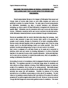 Neuron communication essay in nursing