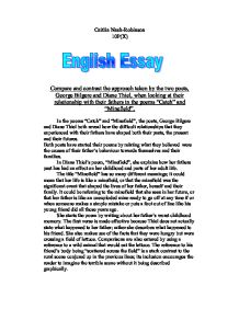 the minefield diane thiel essay