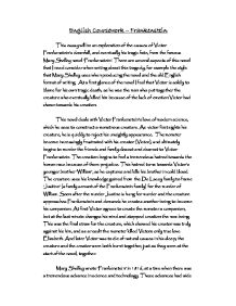 literary essays on frankenstein Frankenstein essays are academic essays for citation these papers were written  primarily by students and provide critical analysis of frankenstein by mary.