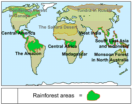 Causes and consequences of deforestation of the amazon rainforest on this map it shows the rainforest around the world and we can see the largest rainforest its the amazonian rainforest we can see all the rainforests gumiabroncs Choice Image