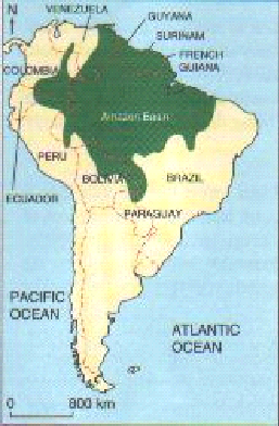 Causes and consequences of deforestation of the amazon rainforest the map shows how the amazon rainforest spread out to the brazils neighbouring countries in south america and as we can see the countries that been gumiabroncs Choice Image