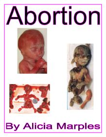 abortion on other lavel The impact of legalized abortion on crime  saw drops in crime before the other 45 states and the district of columbia, which did not allow abortions until the supreme court  ence crime, such as the level of incarceration, the number of police, and measures of the state's economic well-being (the un.
