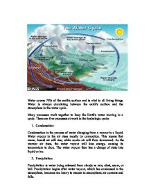 essay on water cycle