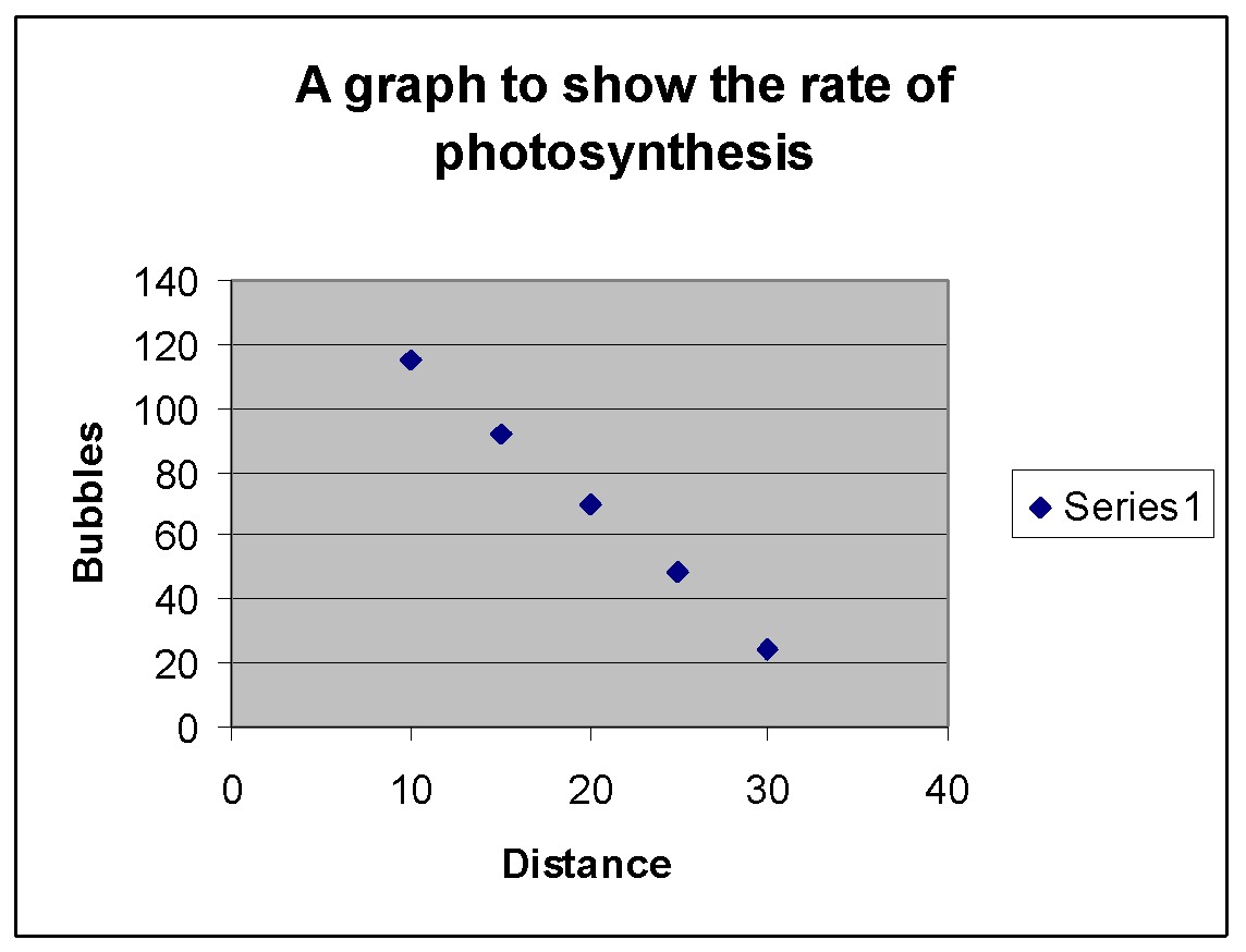 effect light intensity on photsynthesis elodea At low light intensities, the limiting factor governing the rate of photosynthesis is the light intensity as the light intensity increases so does the rate but at high light intensities one or more other factors must be limiting, such as temperature or carbon dioxide supply.