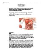 type diabetes informational leaflet what is the difference related gcse humans as organisms essays