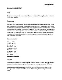 Essay on globalization effects write short