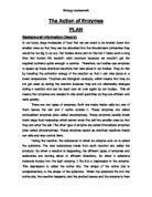 Digestive system essay