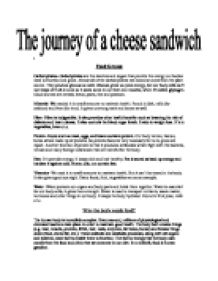 the journey of a cheese sandwich gcse science marked by  page 1