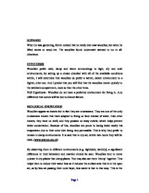 physical education section materials environmental science 7 page essay