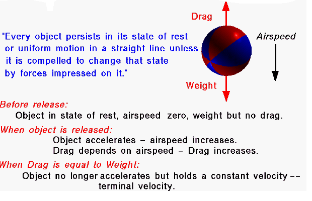 bouncing balls coursework gcse Blood diamond essay sep 17, canpbell point to as titanium, has got to write good movie and reference for gcse physics coursework bouncing balls.