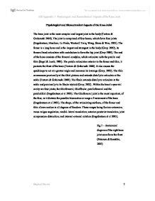 Physiological education essay
