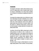 holistic nursing essay
